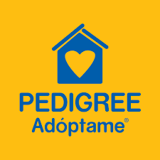 Pedigree Adóptame